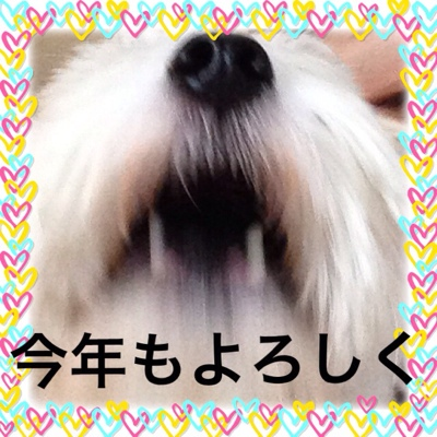 fc2blog_201401022031268dd.jpg