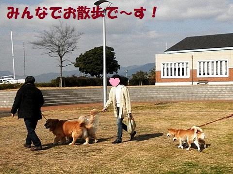 お散歩-001