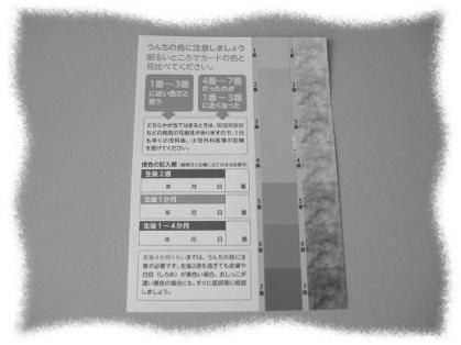2012年5月22日便カラーカード
