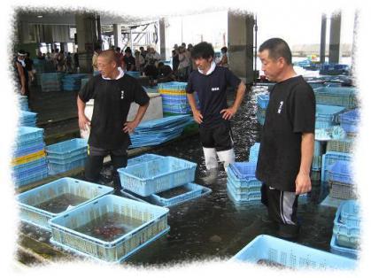 2012年7月15日明石浦漁港③