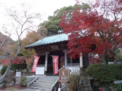 2013年11月24日東山寺の紅葉①