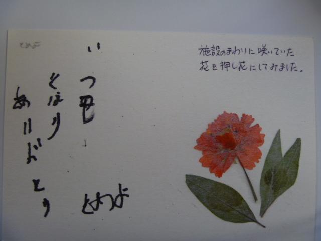 P1040235.jpg