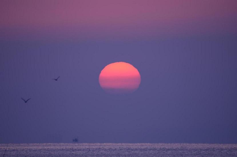 DSC_5012太陽