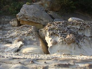 竜串海岸 その2