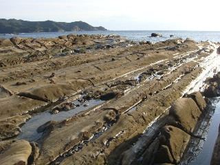 竜串海岸 その5