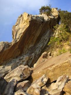 竜串海岸 その9