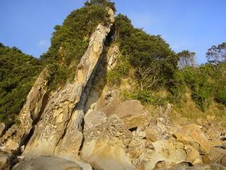 竜串海岸 その10