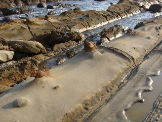 竜串海岸 その12