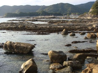 竜串海岸 その14