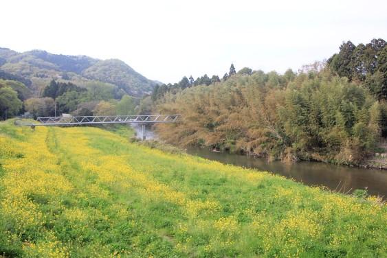 R349里川橋付近