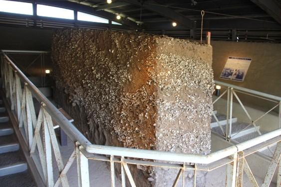 貝塚断面の展示