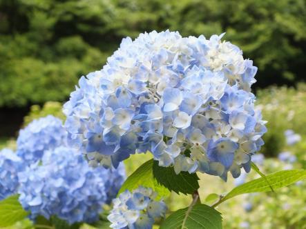 2012-06-09+(13)_convert_20120610003912.jpg