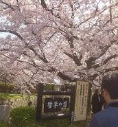 4-4京都