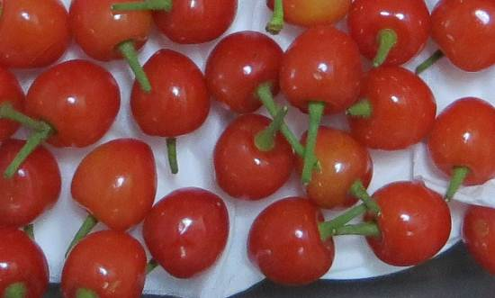 サクランボの赤い実