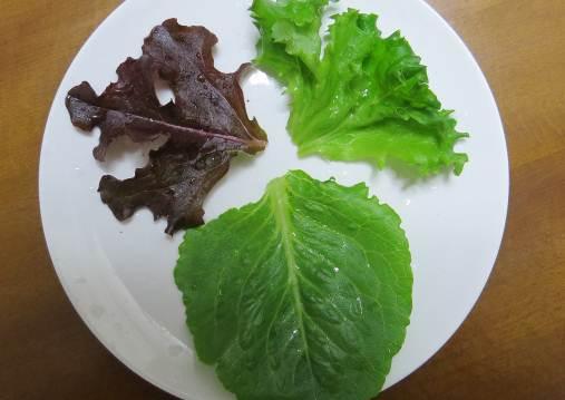 ミックスレタスの葉3種