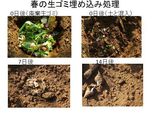 春の生ゴミ処理