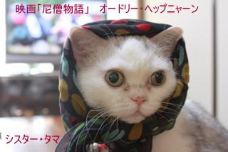 タマすかーふ3