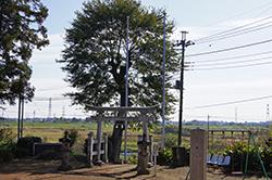 121108岩鼻八幡神社2