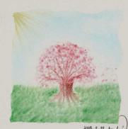 pastel-sakura4.jpg