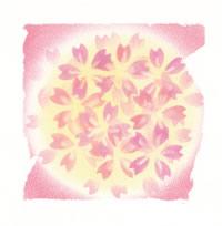 pastel-sakura5.jpg
