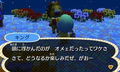 HNI_0081_JPG_20130111114841.jpg
