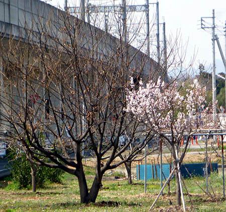 長野新幹線 下