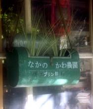 PICT0066-1.jpg