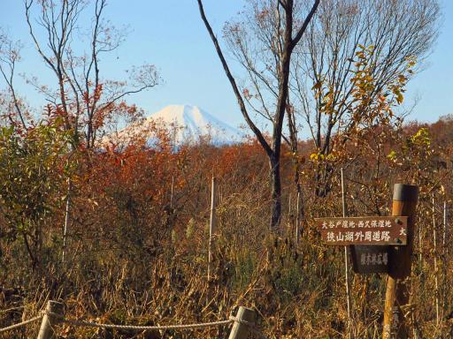 20121216・緑の森納会06