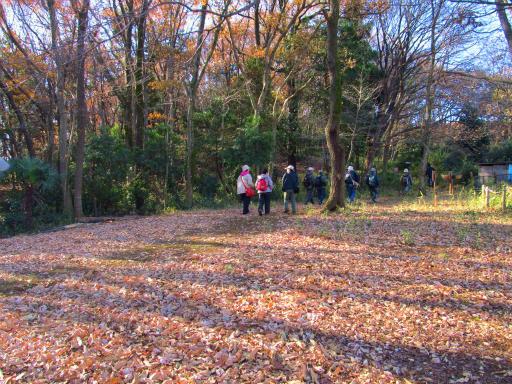 20121216・緑の森納会04
