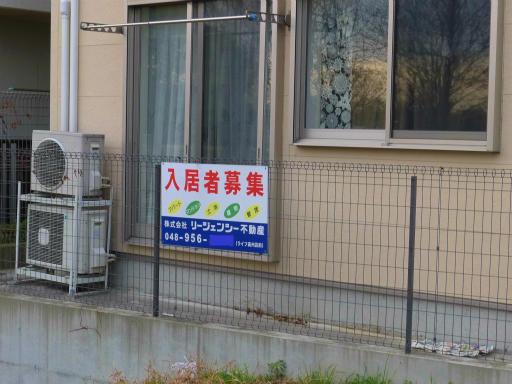 20120107・葛飾10-12