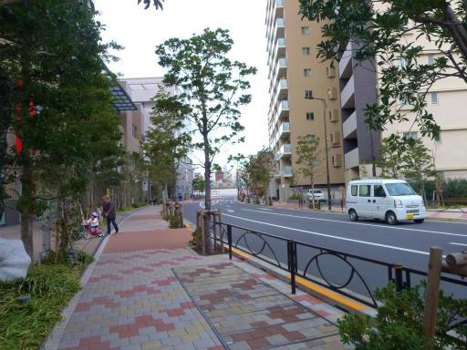 20120107・葛飾11-21