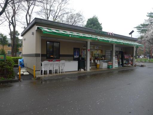 20130327・桜1-03
