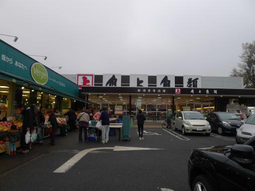 20130327・桜4-05