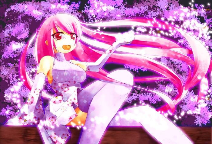 Cherry_blossom01.jpg