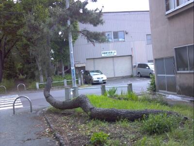 fc2blog_201207071238087e9.jpg