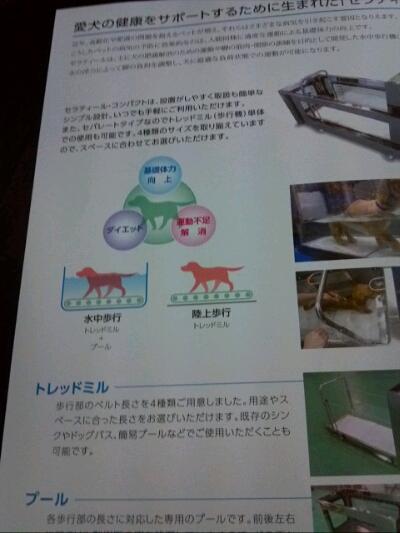fc2blog_201210292356458d8.jpg
