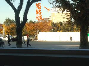 2012-11_25_03.jpg