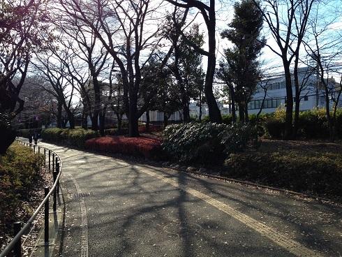 takanodai-16.jpg