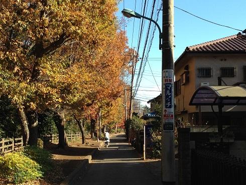 takanodai-9.jpg