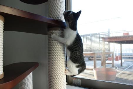 登るのは好き、下りるのはヘタ
