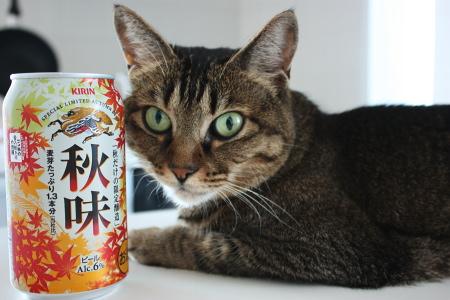 miruraはSの付くメーカーのビールが好きだ