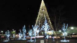 クリスマスツリーこころ