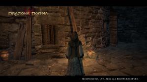 Dragons Dogma Screen Shot _15