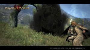 Dragons Dogma Screen Shot _11