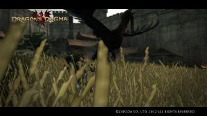 Dragons Dogma Screen Shot _12