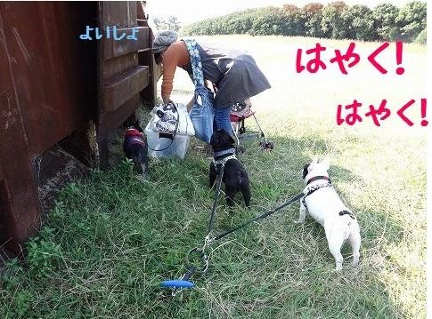 はなぺちゃ会2012.10 ①