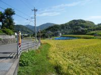 2012_0926kakasi0010.jpg