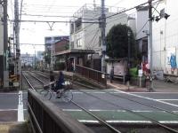 11-2kosinzuka.jpg