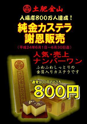 800荳・ココ驕疲・邏秘≡繧ォ繧ケ繝・Λ800蜀・convert_20120601143727