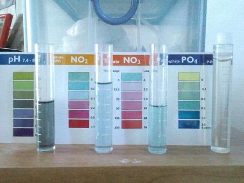 水質検査20120428